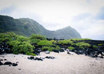 Makapuu_beach_weddings-3